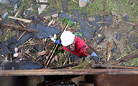 Picture of worker pulling siding off of a house, taken from above, with debris seen on the grass below.